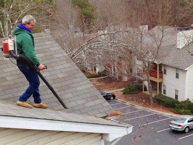 Gutter Cleaning: